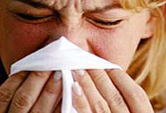 gripe-a[1]