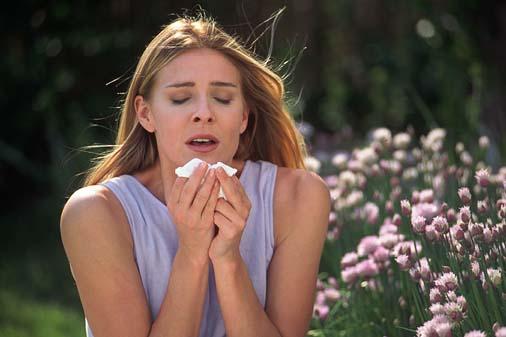 Curso prevención de las alergias