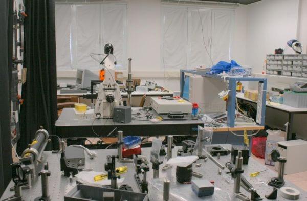 Técnico en laboratorio de imagen