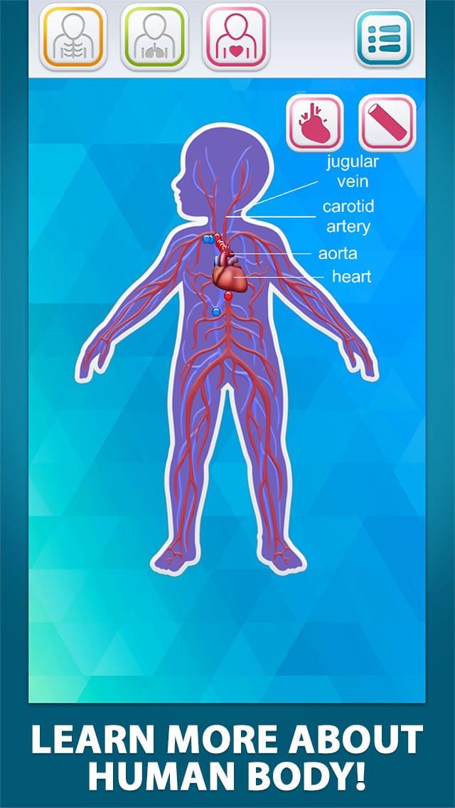 Explore Human Body