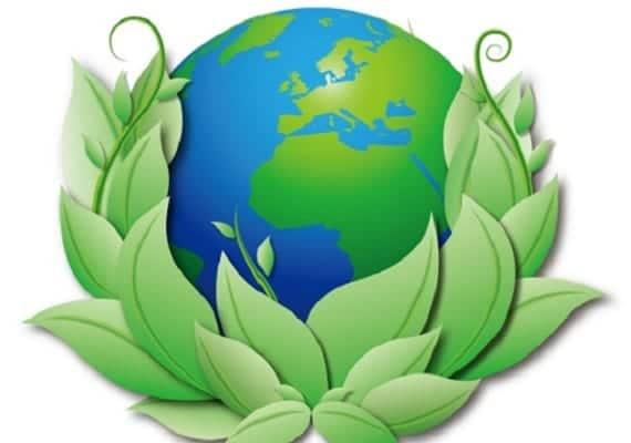 Ayer fue el Día Mundial de la Educación Ambiental