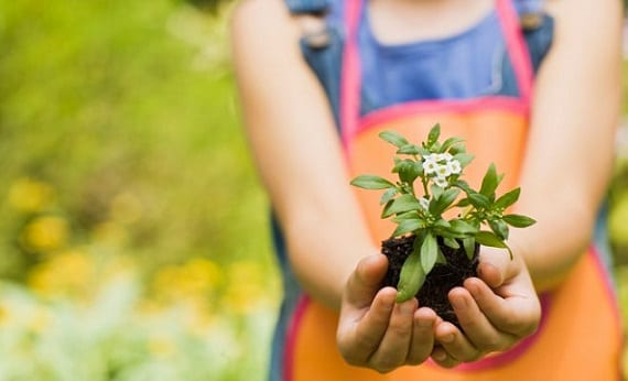 Un estudio muestra que la jardinería potencia las capacidades cognitivas en los niños