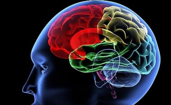 Las siete inteligencias