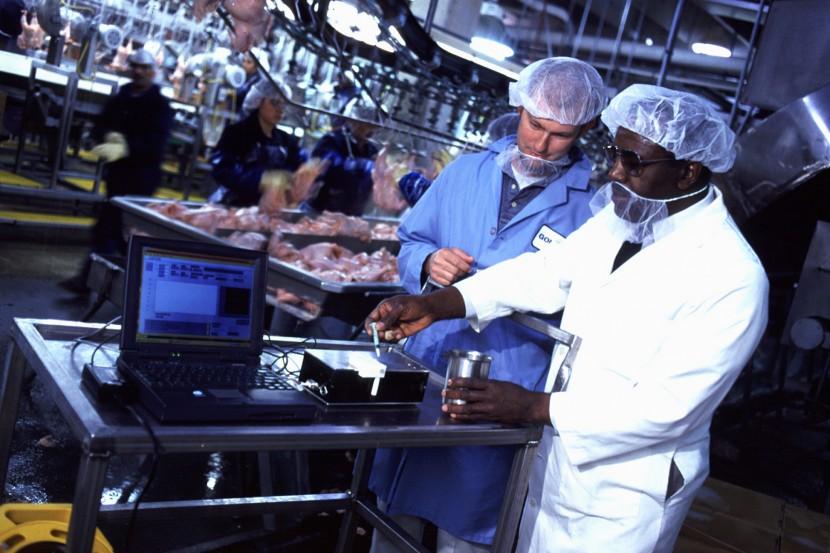área de la industria alimentaria