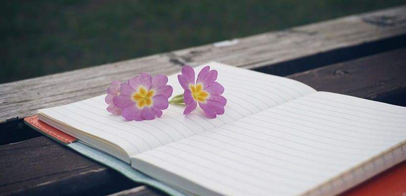 Cómo un blog puede ayudarte a ganar dinero