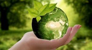 Grado en Ciencias Ambientales