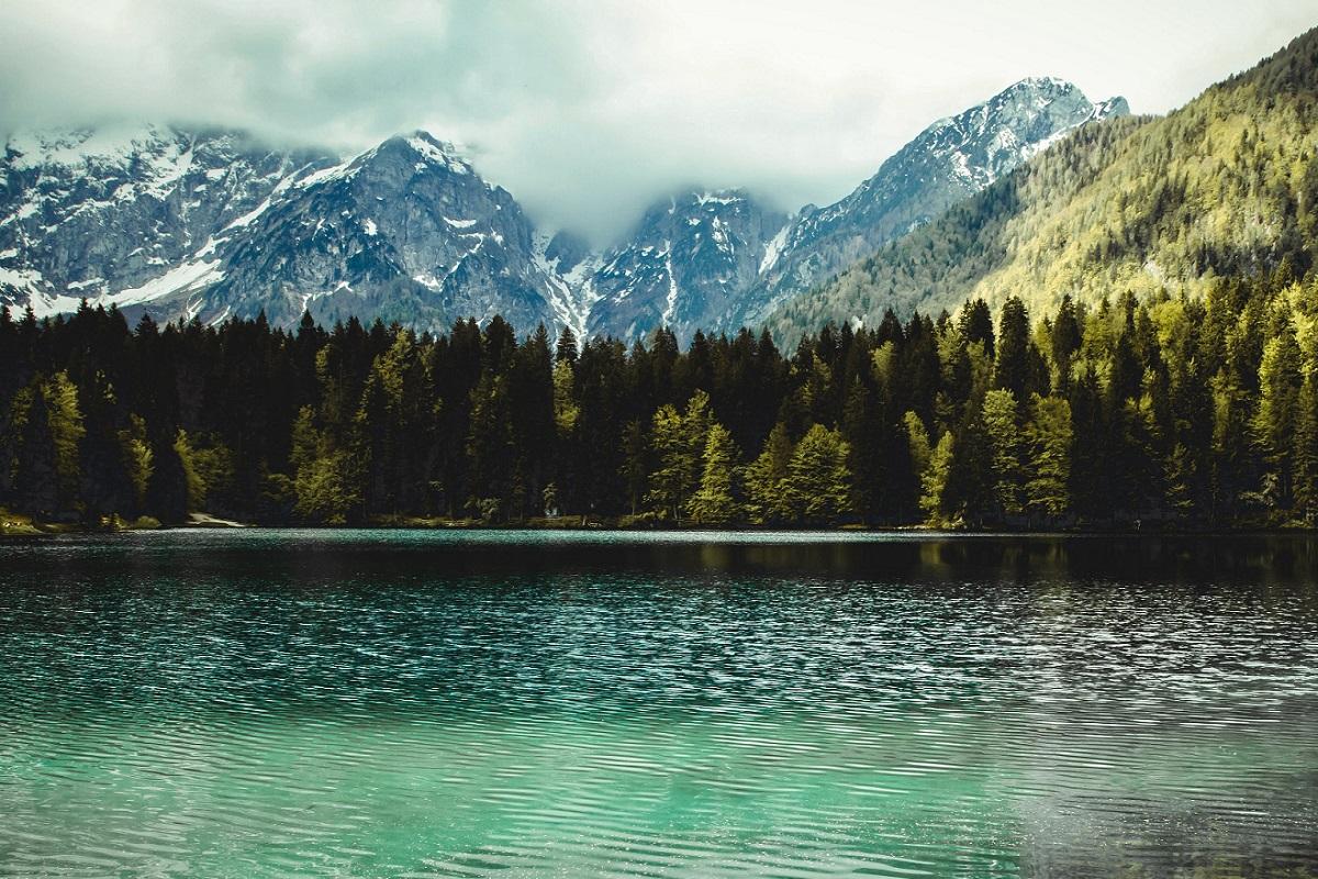 Trabajar como agente medioambiental y proteger la naturaleza
